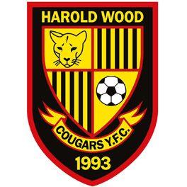 HAROLD WOOD COUGARS YFC
